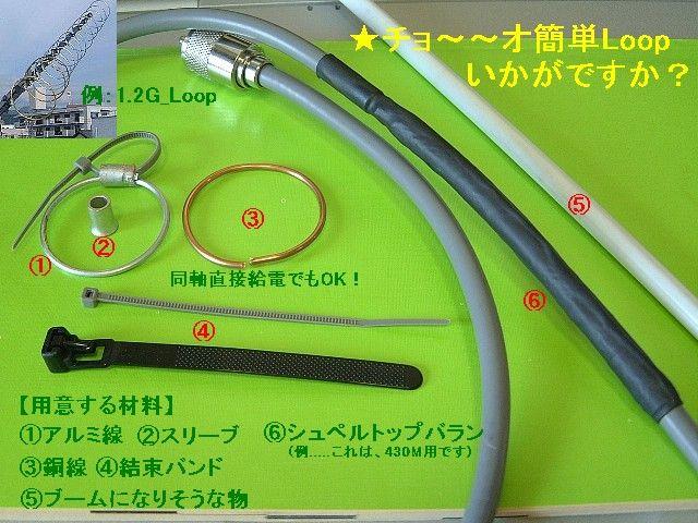 2006_loop_1